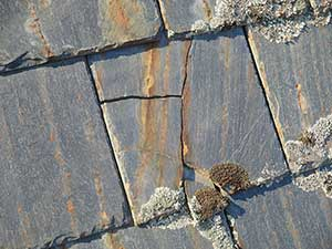 Chinese slate roofing rusting and falling apart